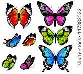 butterflies design | Shutterstock .eps vector #447382522