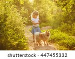 Stock photo little girl and pets girl and dog standing on the road in the city park pedigree dogs spitz soft 447455332