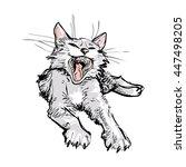yawning cat. | Shutterstock .eps vector #447498205