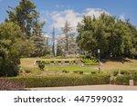 mount herzl  the site of israel'... | Shutterstock . vector #447599032