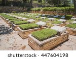 Military Cemetery At The Mount...