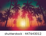 silhouette coconut palm trees... | Shutterstock . vector #447643012