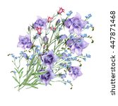 wildflowers with bell flowers    Shutterstock . vector #447871468