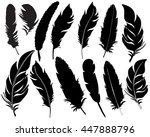 vector  isolated feathers... | Shutterstock .eps vector #447888796