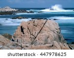 Asilomar State Marine Reserve...