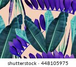 seamless  tropical flower ... | Shutterstock . vector #448105975