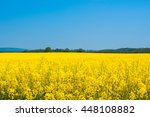 landscape with a yellow... | Shutterstock . vector #448108882
