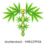 a medical marijuana plant... | Shutterstock . vector #448129936