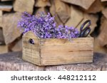 Bunch Bouquet Of Lavender And...
