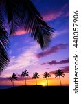 Hawaiian Sunset Framed With...