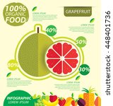 grapefruit. infographic... | Shutterstock .eps vector #448401736