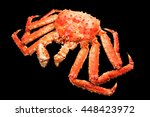 large red king crab from... | Shutterstock . vector #448423972