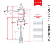 woman body measurement chart.... | Shutterstock .eps vector #448473646
