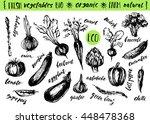 hand drawn ink sketch.... | Shutterstock .eps vector #448478368