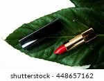 cosmetics spa lipstick  top... | Shutterstock . vector #448657162