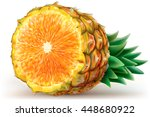 composition fruits of pineapple ...   Shutterstock .eps vector #448680922