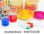 the buffer in beaker and... | Shutterstock . vector #448731538