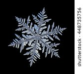 snowflake isolated on black... | Shutterstock . vector #448735756