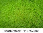 green grass background texture   Shutterstock . vector #448757302