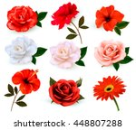 Stock vector set of a beautiful flowers isolated on a white background vector 448807288