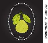 pomelo  citrus maxima   or... | Shutterstock .eps vector #448881952
