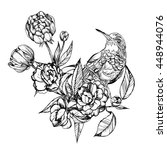 colibri.detailed drawing of a...