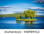 Small Island In Lake...