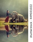 Elephant And Asian Girl