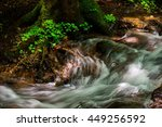 Creek In The Dark Forest With...