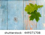 oak and maple leaves on old... | Shutterstock . vector #449371708