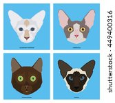 cat breeds  set  vector... | Shutterstock .eps vector #449400316