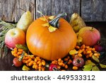 large delicious pumpkin and... | Shutterstock . vector #449533312