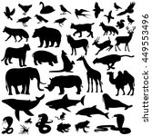 icons mammal vector illustration | Shutterstock .eps vector #449553496