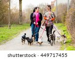 Stock photo dog sitters walking their customers 449717455