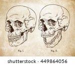 hand drawn line art... | Shutterstock .eps vector #449864056