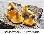 fresh chanterelle mushrooms on...   Shutterstock . vector #449904886