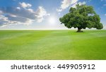 green tree nature landscape on... | Shutterstock . vector #449905912