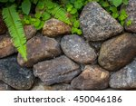 Stone Wall And Green Leaf In...