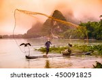 Traditional Chinese Cormorant...