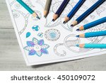 coloring book for adults with... | Shutterstock . vector #450109072