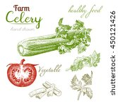 celery 1. set of hand drawn... | Shutterstock .eps vector #450121426