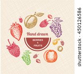 collection of hand drawn fruits ... | Shutterstock .eps vector #450126586