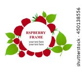 raspberry frame on white... | Shutterstock .eps vector #450138556