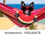 French Bulldog Dog Relaxing On...