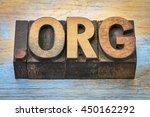dot org internet domain for a... | Shutterstock . vector #450162292