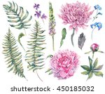 set vintage watercolor elements ... | Shutterstock . vector #450185032