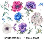 set vintage watercolor elements ... | Shutterstock . vector #450185035