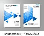 brochure template  flyer design ... | Shutterstock .eps vector #450229015
