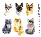 Stock photo set of watercolor isolated hand drawn cats 450288775