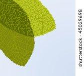 green leaf. vector illustration   Shutterstock .eps vector #45029698